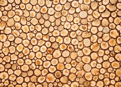 juniper plate